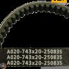 Continental CVT Belt 743-20-30 Contitech XT (GY6 shortcase)
