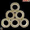 Dr. Pulley Variator Roller Weight Set 25x22 (Aprilia, Piaggio 500)
