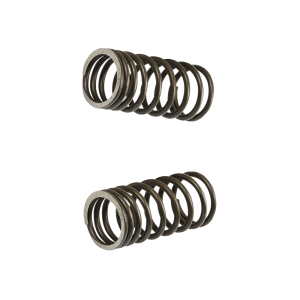 G- Valve Spring 2V Inner Set (139QMB, GY6)