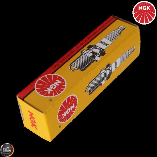 NGK Spark Plug (DPR7EA-9)