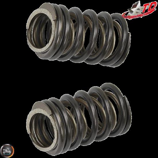 Taida Valve Springs 12,000 RPM 2V Titanium (139QMB, GY6)
